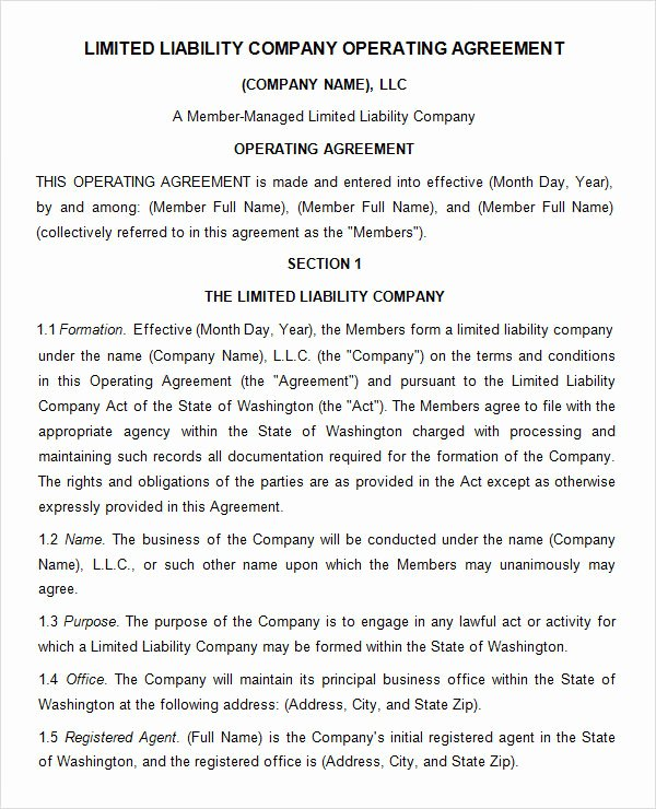 Corporation Operating Agreement Template Luxury 8 Sample Operating Agreement Templates to Download