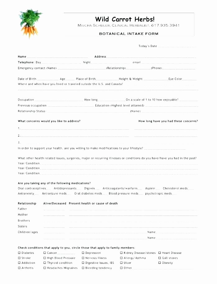 Counseling Intake form Template Lovely Intake forms for Counseling Private Practice Client form