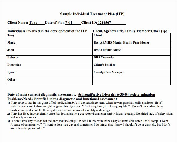 Counseling Treatment Plan Template Inspirational Treatment Plan Template