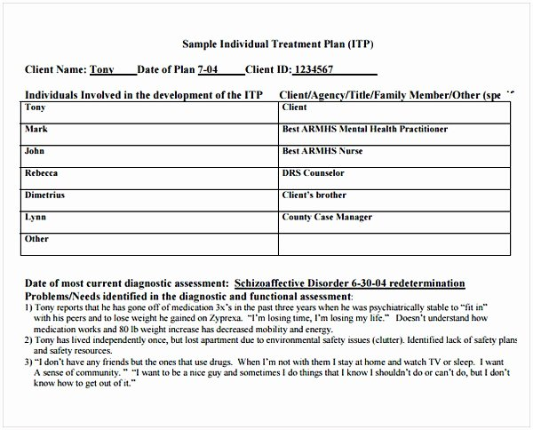 Counseling Treatment Plan Template Luxury Counseling Treatment Plan Template Pdf