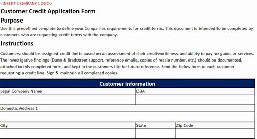 Customer Credit Application Template Unique Customer Credit Application form Accounting Template