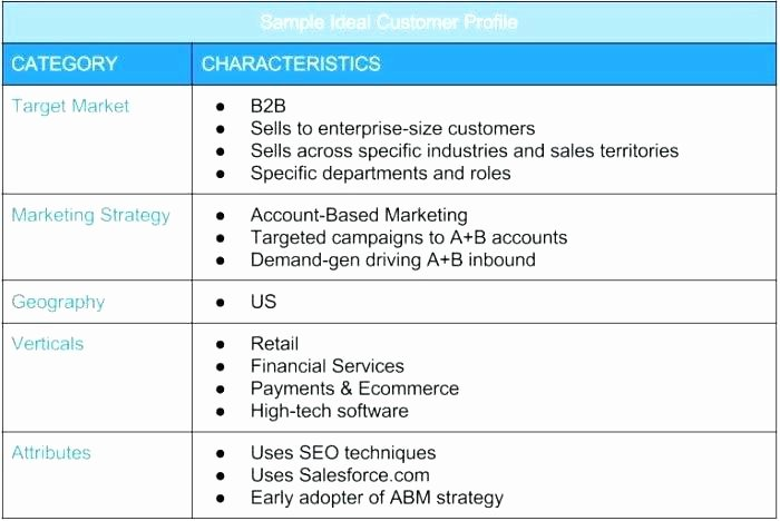 Customer Profile Template Excel Best Of Sales Account Profile Template Customer Profile Template