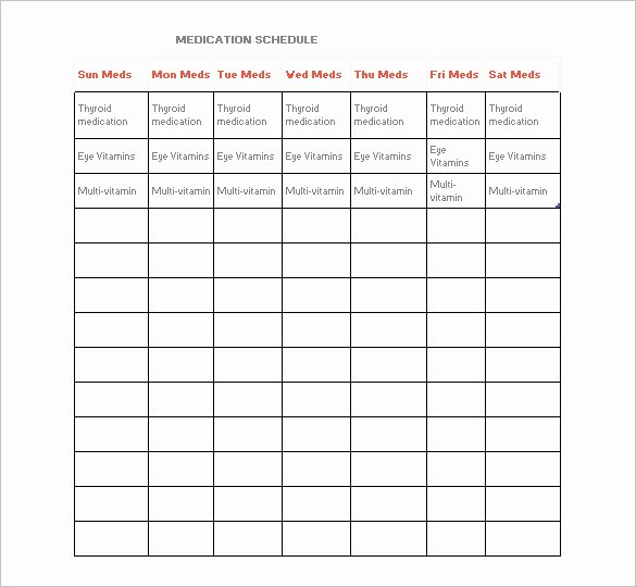 Daily Medication Schedule Template New Medication Schedule Template 14 Free Word Excel Pdf