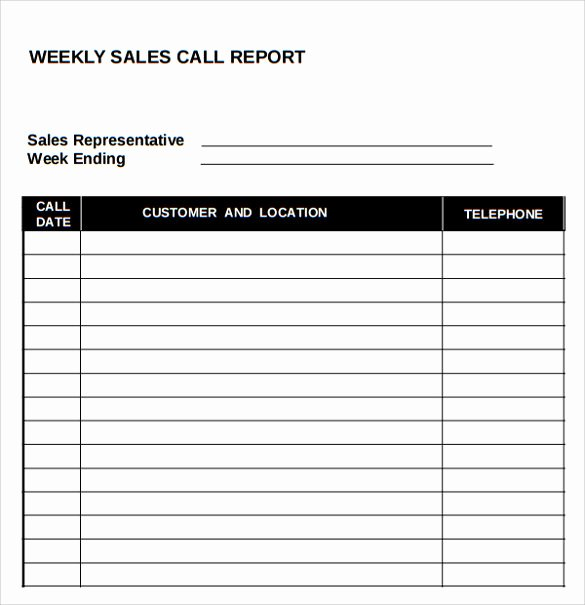 Daily Sales Report Template New 14 Sales Call Report Samples