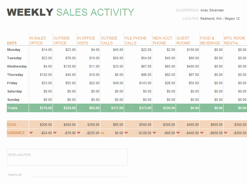 Daily Sales Report Template New Daily Sales Report Template format Example