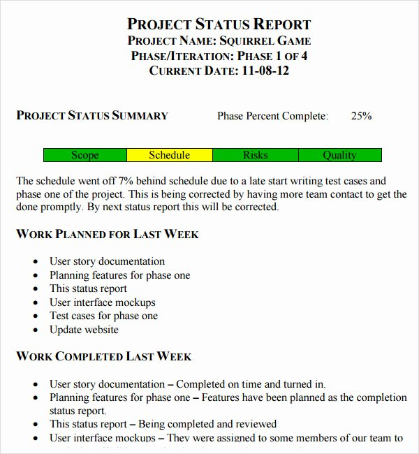 Daily Status Report Template Beautiful 14 Sample Useful Project Status Report Templates