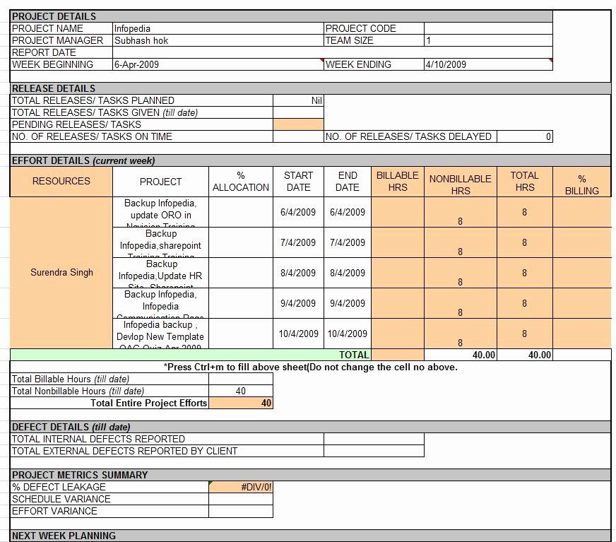 Daily Status Report Template Beautiful Weekly Status Report Template Professional Business