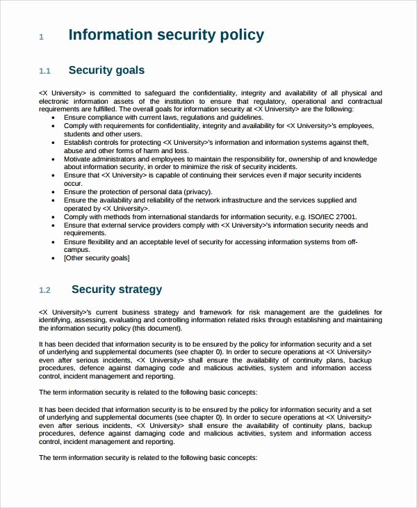 Data Security Policy Template Beautiful 10 It Security Policy Templates