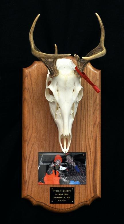 Deer Antler Printable Template Beautiful Deer Horn Plaques Deer Antlers Replica A Carved Style