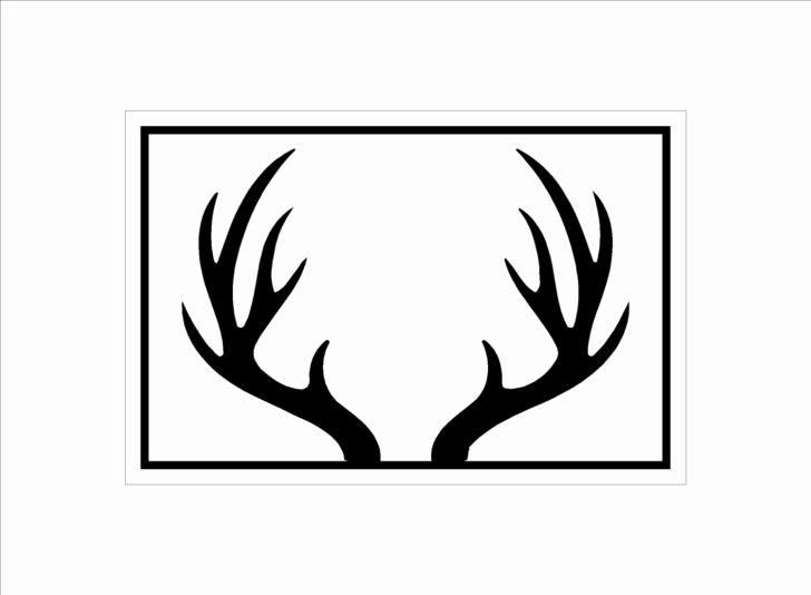 Deer Antler Printable Template Fresh Clip Art White Tail Head Collection Antler Horse