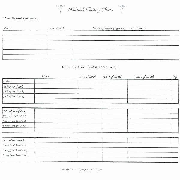 Descendant Chart Template Excel Best Of Genealogy Tree Template – Hydrellatonefo