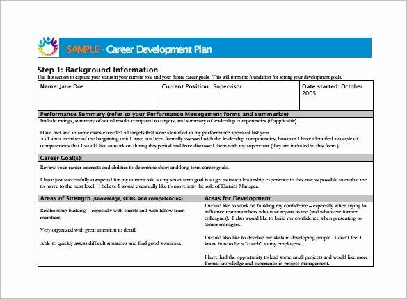 Development Plan Template Word Elegant Career Development Plan Template 10 Free Word Pdf