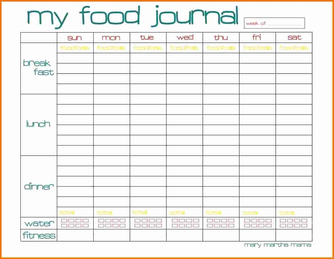 Diabetic Food Journal Template Awesome Food Journal Template