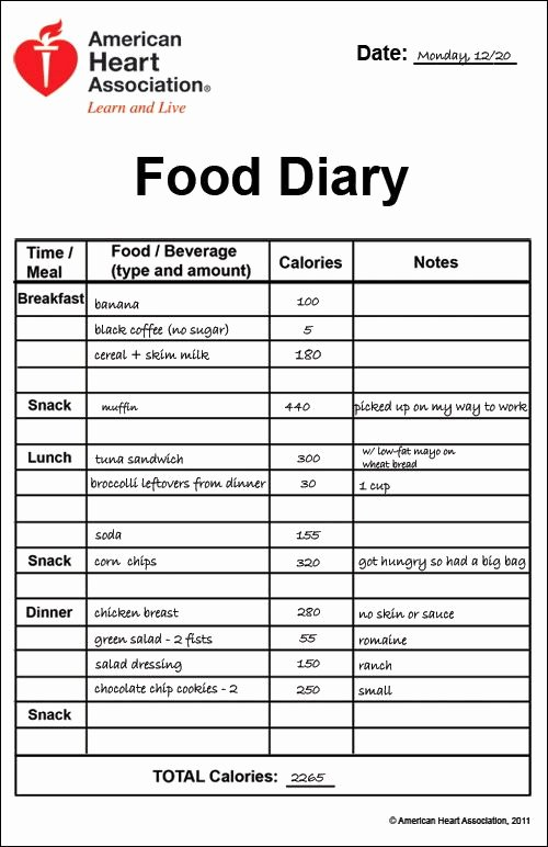 Diabetic Food Journal Template Awesome Printable Food Diary Calorie Keeper