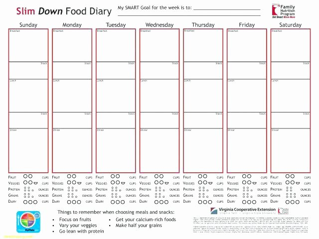 Diabetic Food Journal Template Best Of Diabetic Food Diary Template – Meicys