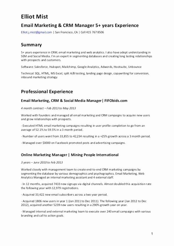 Digital Marketing Contract Template Beautiful Resume Relationship
