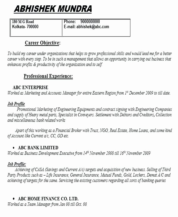 Digital Marketing Contract Template Inspirational Digital Marketing Agency Contract Template Resume Email