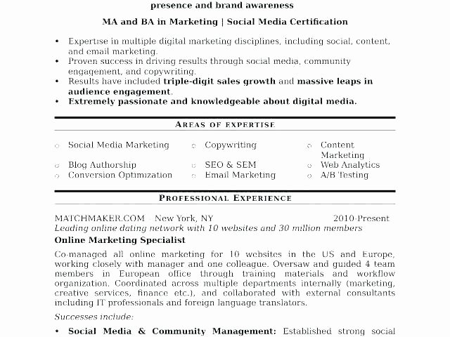 Digital Marketing Contract Template Luxury social Media Agreement Template