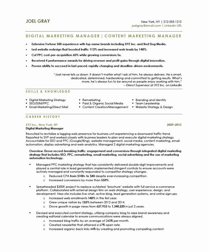 Digital Marketing Resume Template Awesome Digital Marketing Manager Free Resume Samples