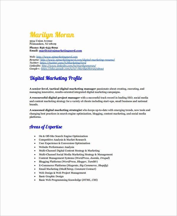 Digital Marketing Resume Template Beautiful 7 Marketing Resume Templates