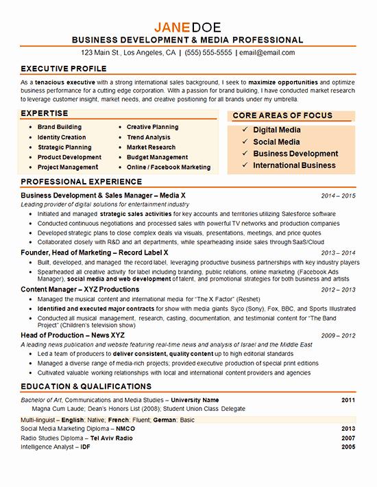 Digital Marketing Resume Template Inspirational Digital Marketing Resume Example