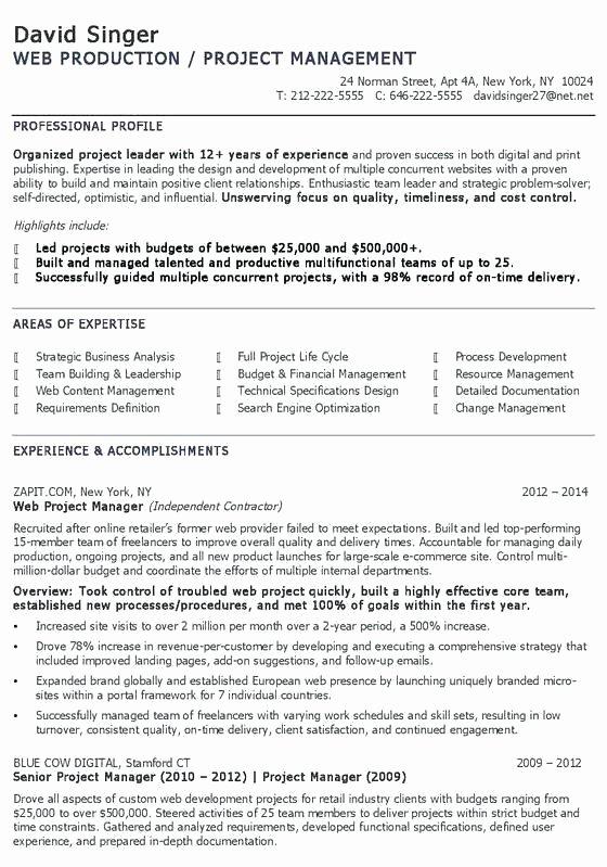 Digital Marketing Resume Template Inspirational Digital Marketing Resume Sample Marketing Resumes Samples