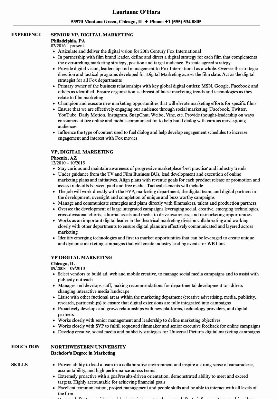 Digital Marketing Resume Template Unique Vp Digital Marketing Resume Samples