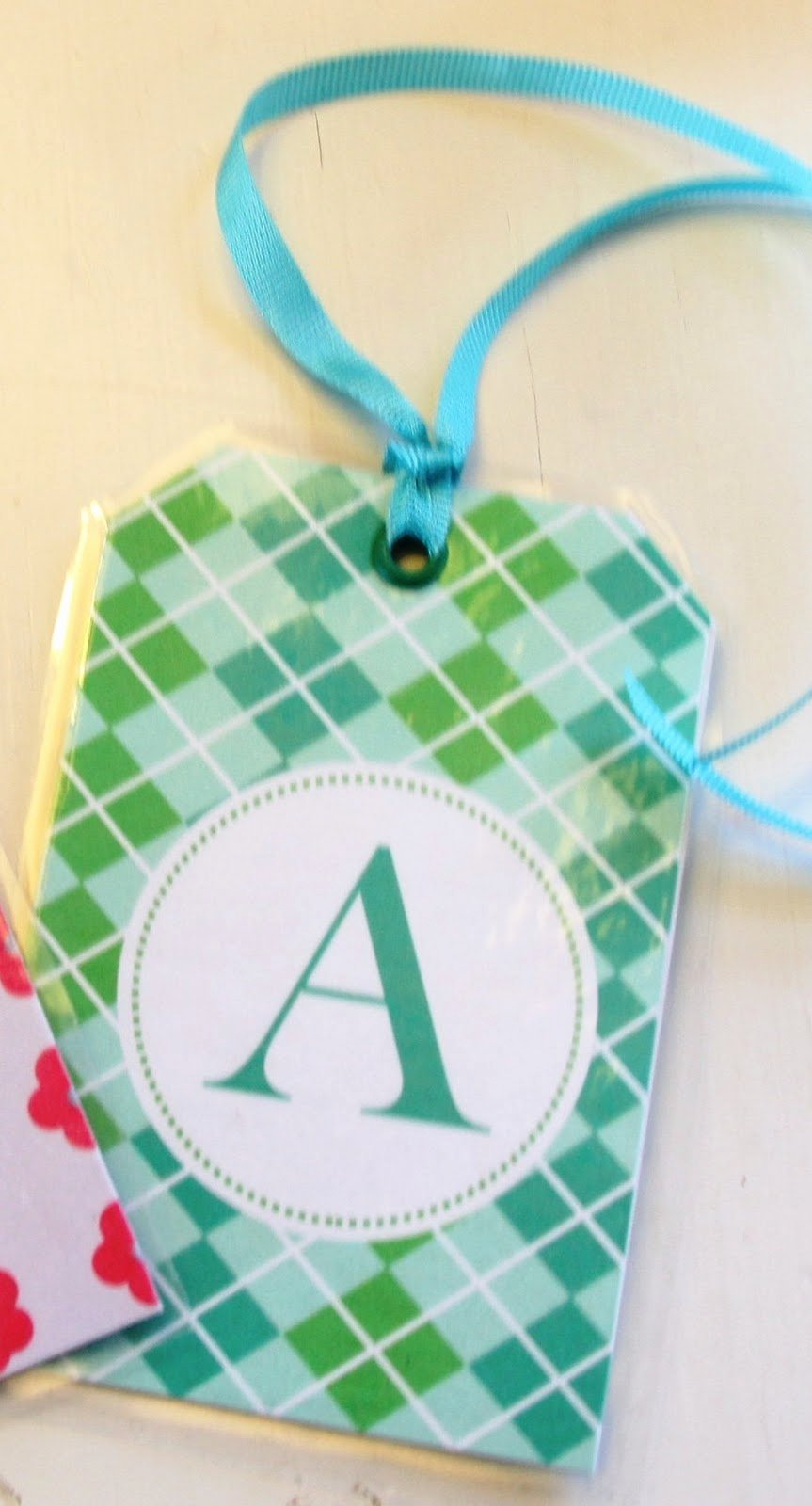 Diy Luggage Tags Template Beautiful Stranded In Cleveland Kids Luggage Tags Diy