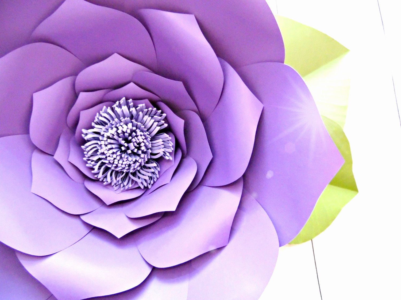 Diy Paper Flower Template Beautiful Center Variations Diy Giant Paper Flowers Abbi Kirsten