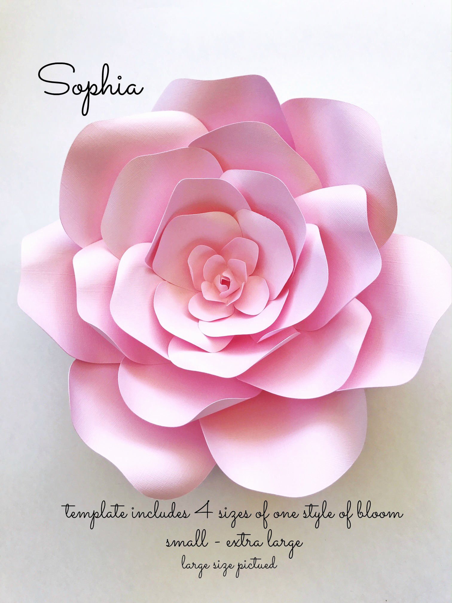 Diy Paper Flower Template Beautiful Diy Paper Flowers for Photo Backdrops or Home Decor Paper