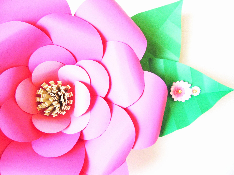 Diy Paper Flower Template Beautiful Paper Flower Templates Diy Giant Paper Flowers Diy Flower