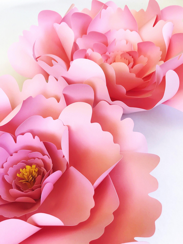 Diy Paper Flower Template Fresh Peony Paper Flower Template Diy Instant