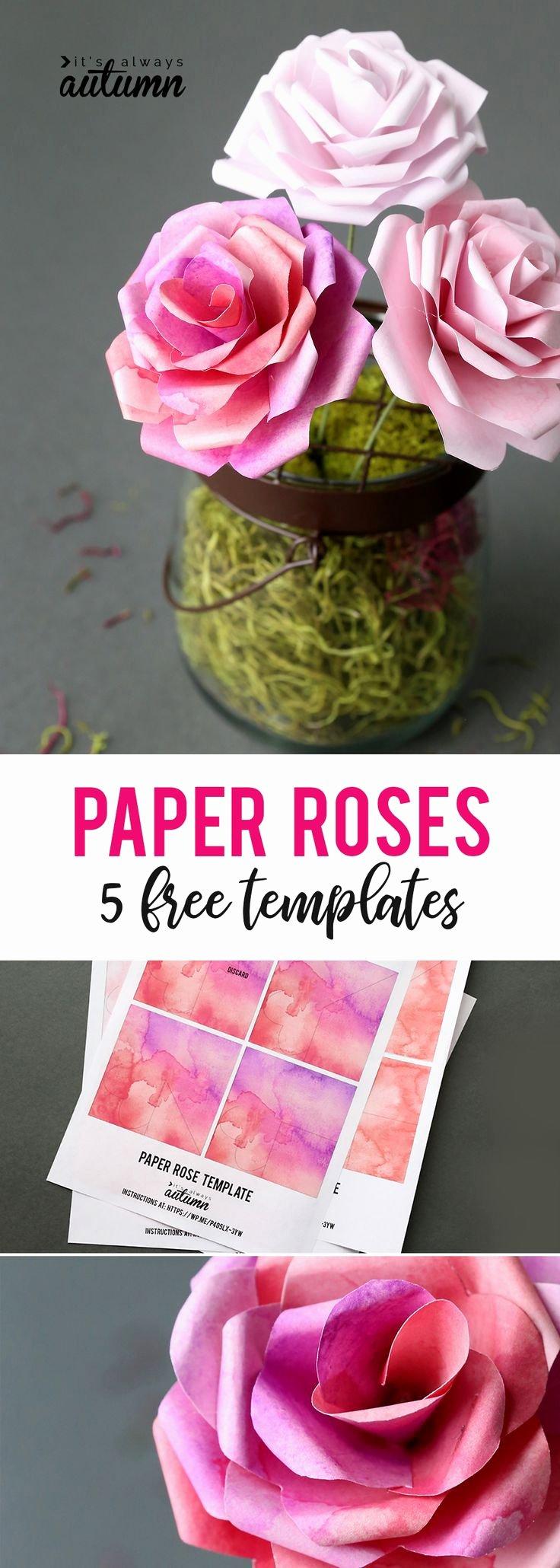 Diy Paper Flower Template Inspirational Best 25 Cookbook Template Ideas On Pinterest