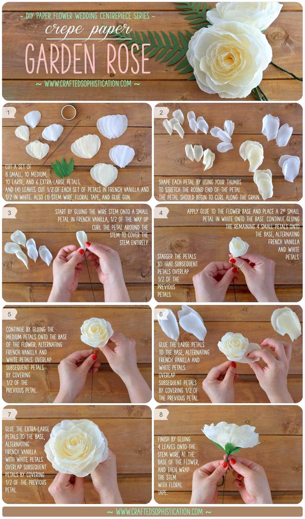 Diy Paper Flower Template Inspirational Diy Crepe Paper Garden Rose