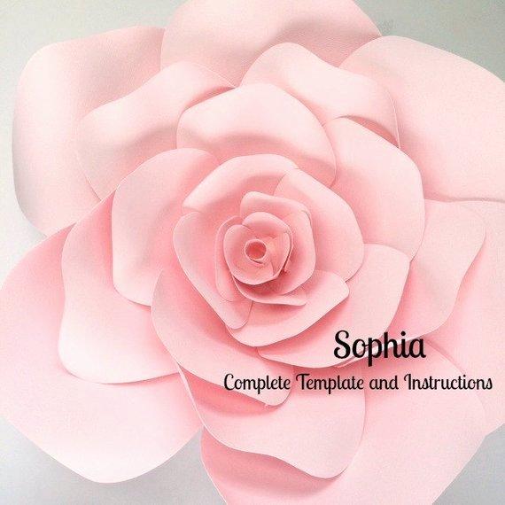 Diy Paper Flower Template Unique Paper Flower Template Paper Flower Wall Diy Paper by