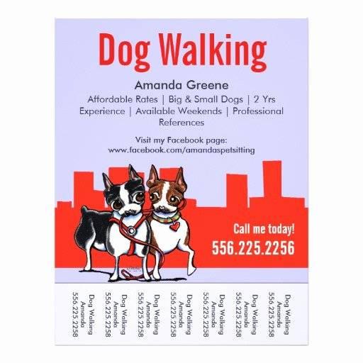Dog Walking Flyer Template Awesome Dog Walking Walker Boston Terriers Tear Sheet Flyer Design