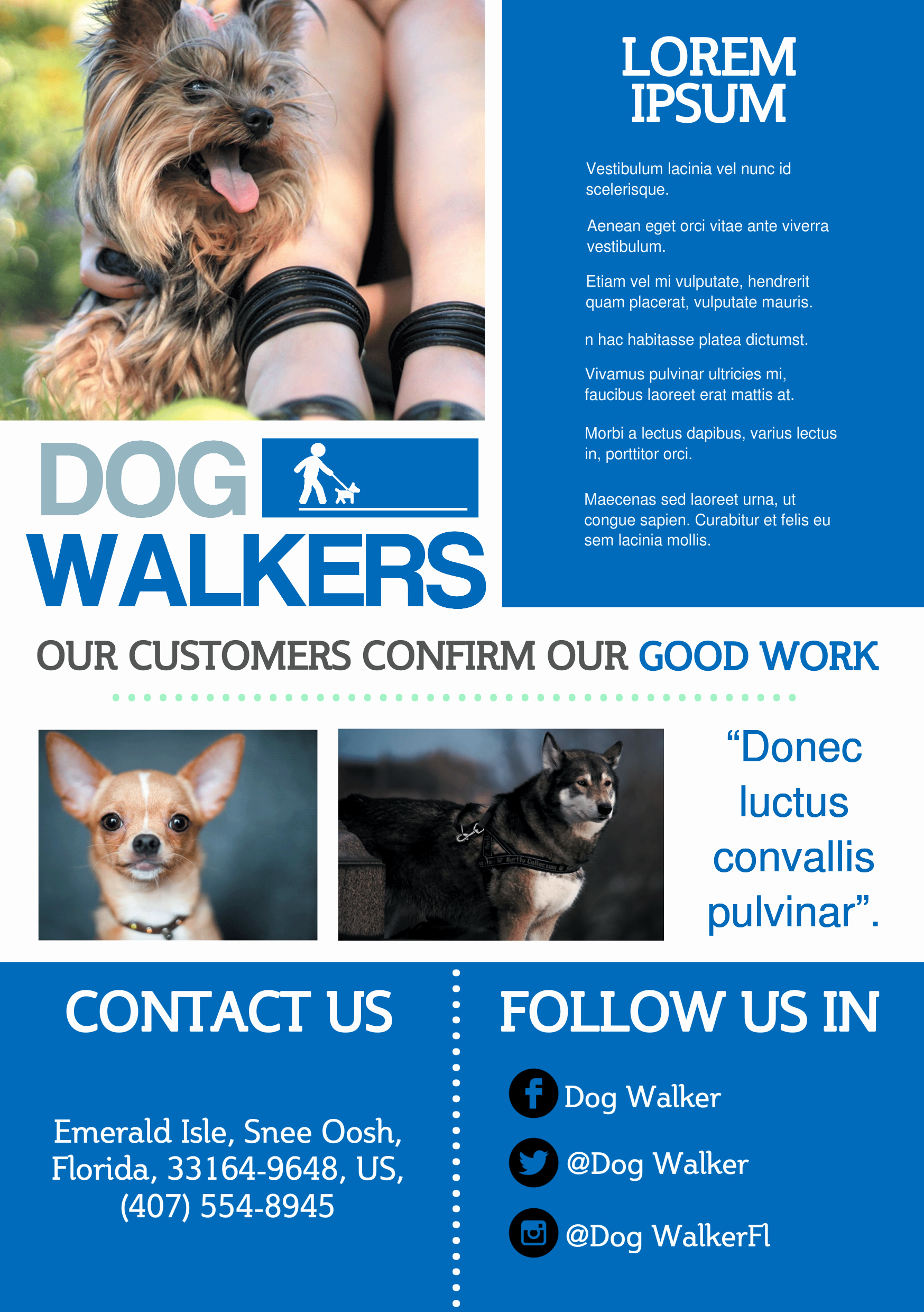 Dog Walking Flyer Template Best Of Dog Walker A5 Promotional Flyer