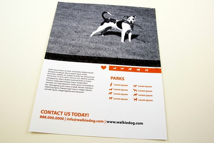 Dog Walking Flyer Template Elegant Dog Walking Service Flyer Template