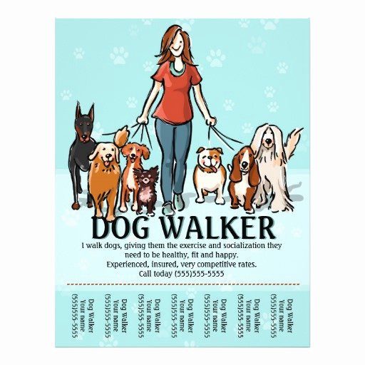 Dog Walking Flyer Template Unique Dog Walking Dog Walker Tearsheet Flyer