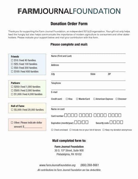 Donation form Template Word Lovely 6 Charitable Donation form Templates formats Examples