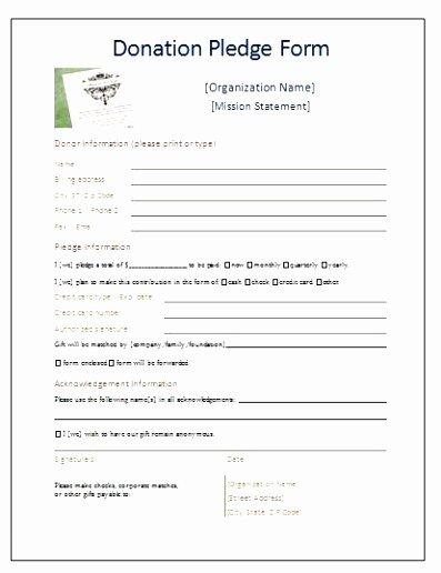 Donor Pledge Card Template New 5 Church Pledge Card Template Roeca