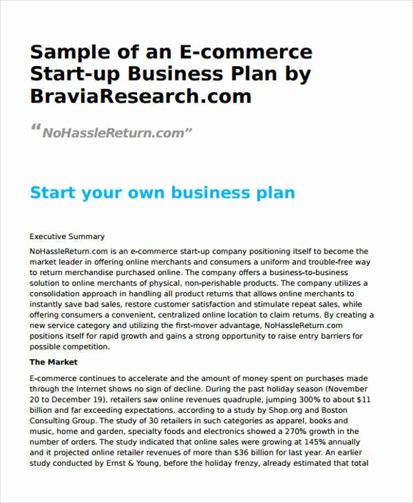 Ecommerce Business Plan Template Inspirational 22 Business Plan Templates