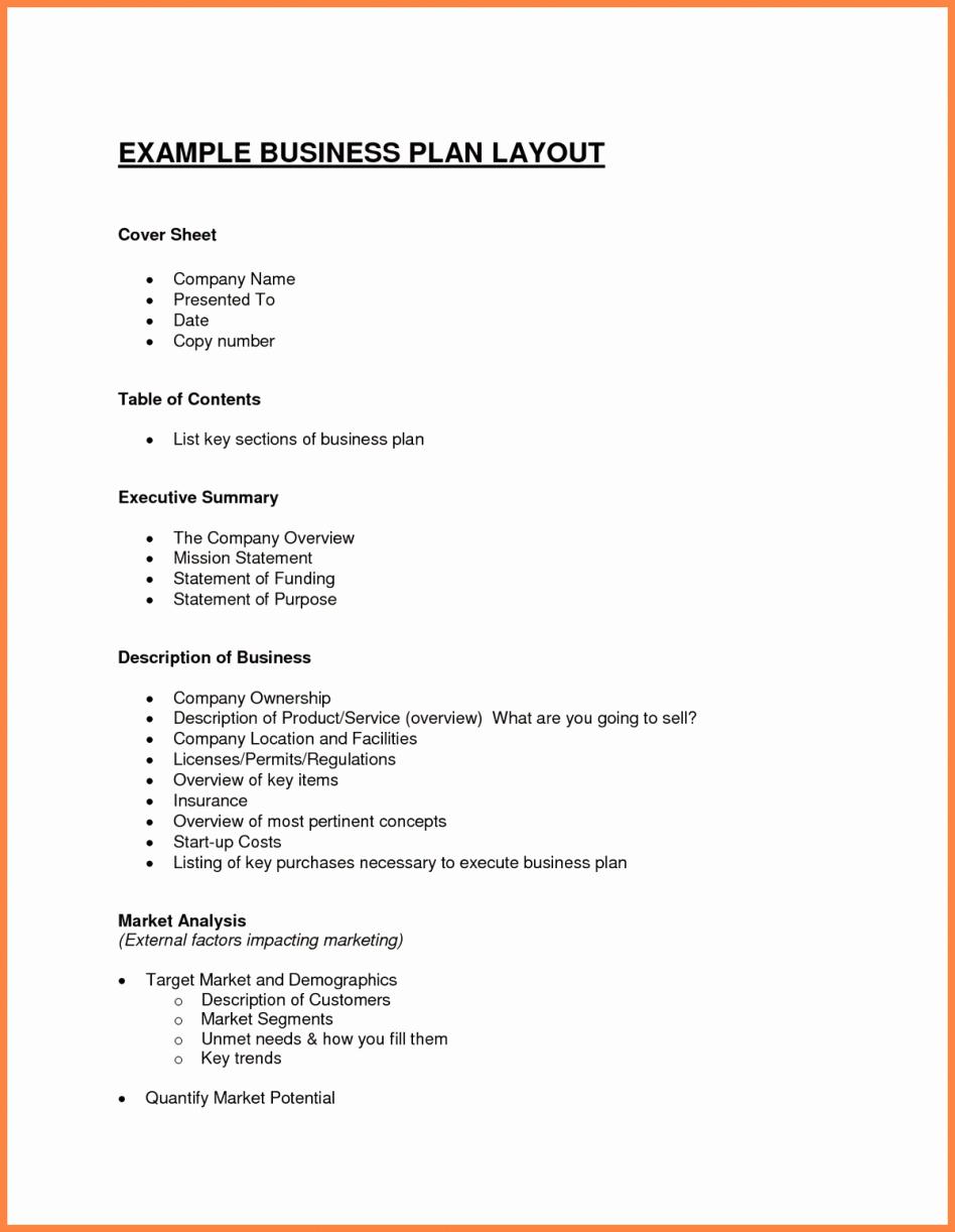 Ecommerce Business Plan Template Lovely Internet Business Plan E Merce Template Sample