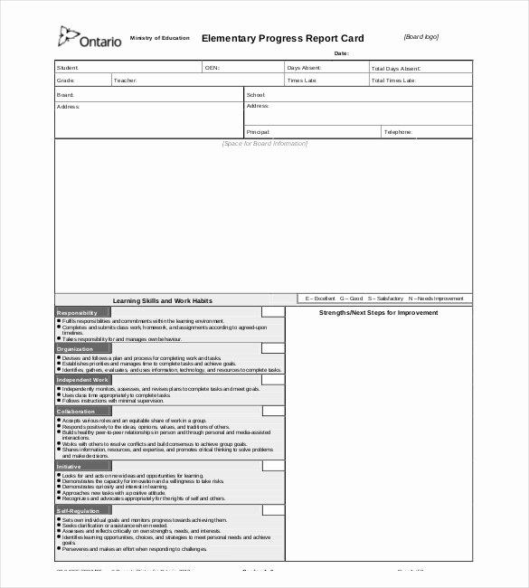 Elementary Progress Report Template Lovely Progress Report Templates 23 Free Word Pdf Google