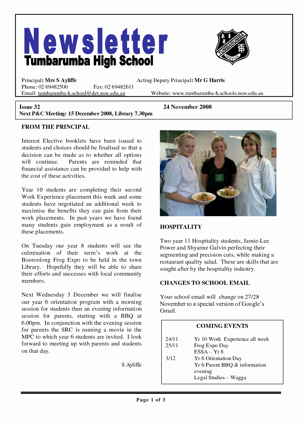 Elementary School Newsletter Template Awesome 17 Awesome High School Newsletter Templates Images