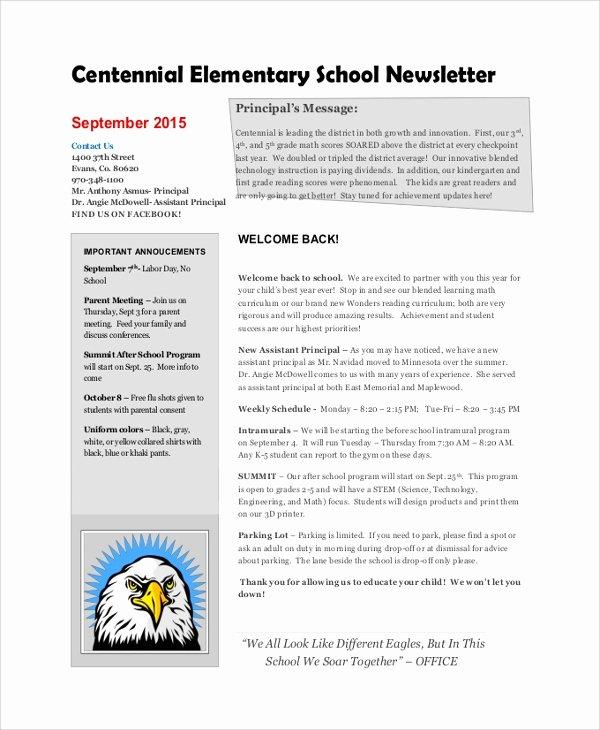Elementary School Newsletter Template Beautiful 8 Sample School Newsletters