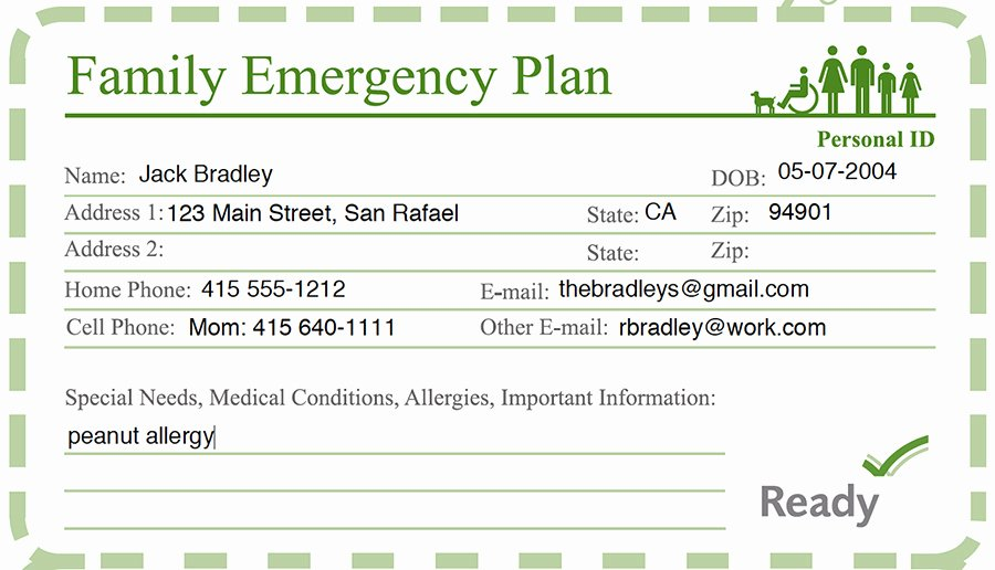 Emergency Contact Card Template Lovely Family Disaster Preparedness