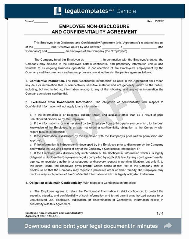 Employee Confidentiality Agreement Template Beautiful Employee Non Disclosure Agreement Create An Nda
