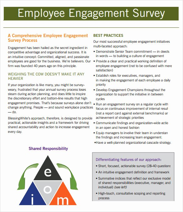 Employee Engagement Plan Template Unique Employment Engagement Survey 7 Download Documents In