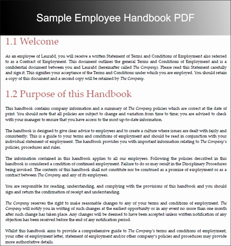 Employee Handbook Template Word Fresh Employee Handbook Template Beepmunk